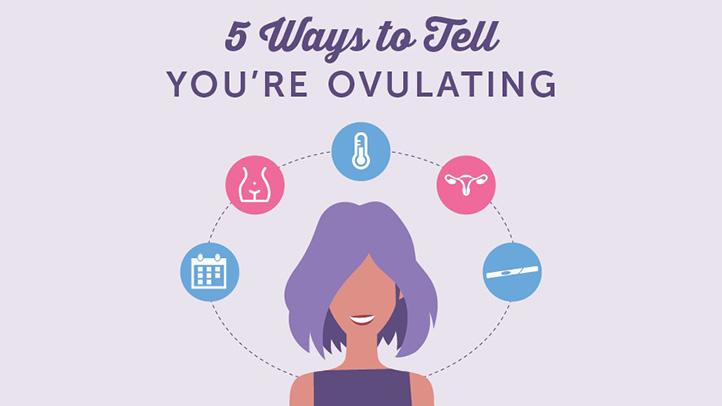 Ovulation symptoms