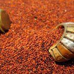 Best Millet For Increasing Weight In Children